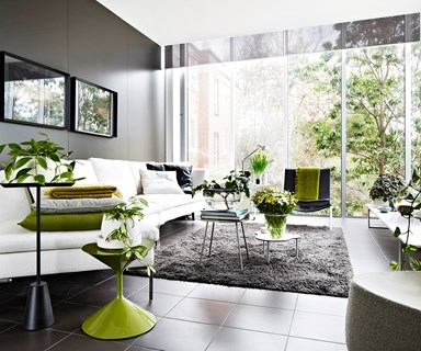 12 easy indoor plant styling tips