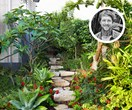 Wild and free: creating an untamed garden