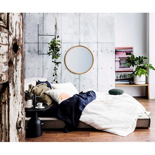 Winter care tips for indoor plants homes - Indoor plant for bedroom ...