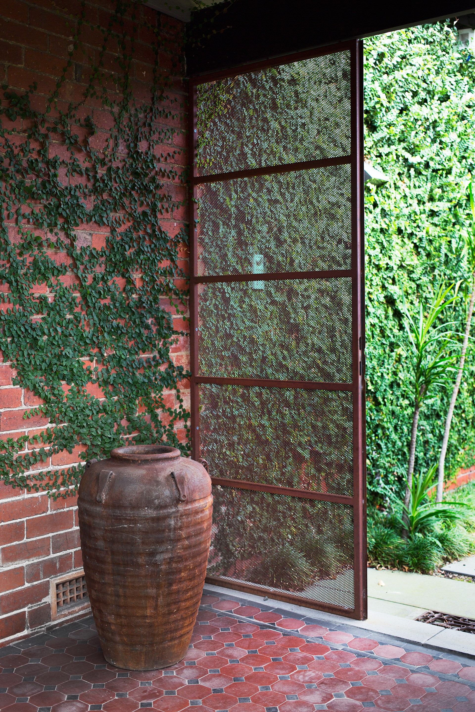 A climbing fig, Ficus pumila, carpets the brick wall at the entrance and appears to emerge from a weathered pot.
