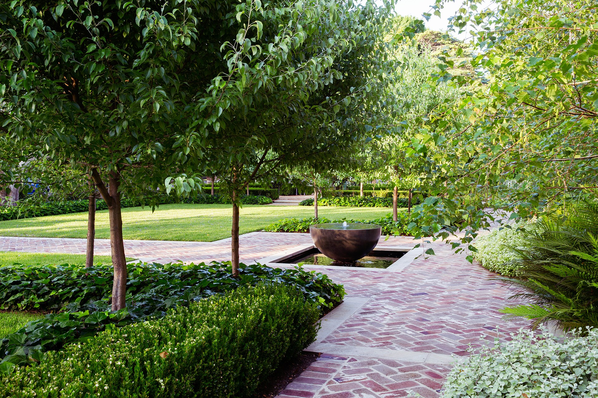 Pleached snow pear trees (Pyrus nivalis) underplanted with large-leaf ivy (Hedera felix) frame the front entry pathway and water feature.