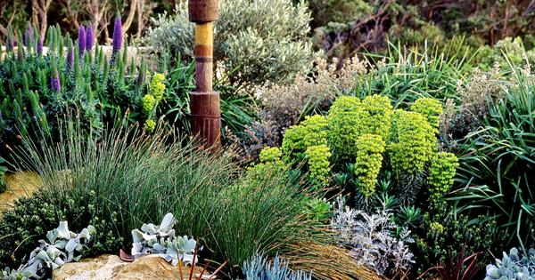 How To Create A Native Coastal Garden | Homes To Love