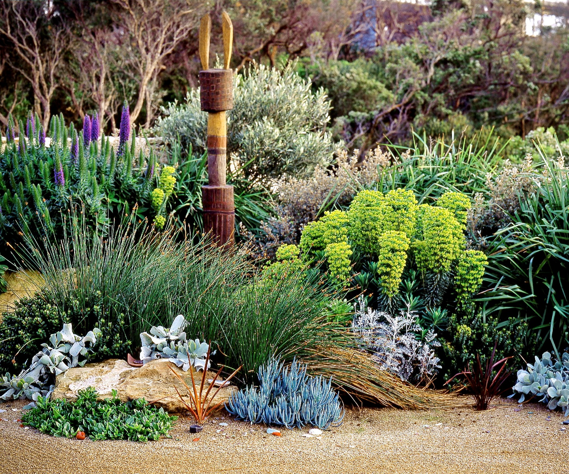 how to create a native coastal garden