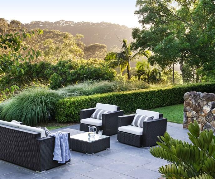 Central Coast NSW garden