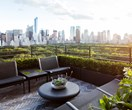 Rooftop garden project in New York City