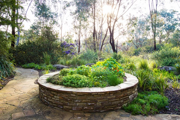 "Sam and Lisa call this their ""salad bowl"", a circular garden bed, constructed from recycled stone, containing edibles."