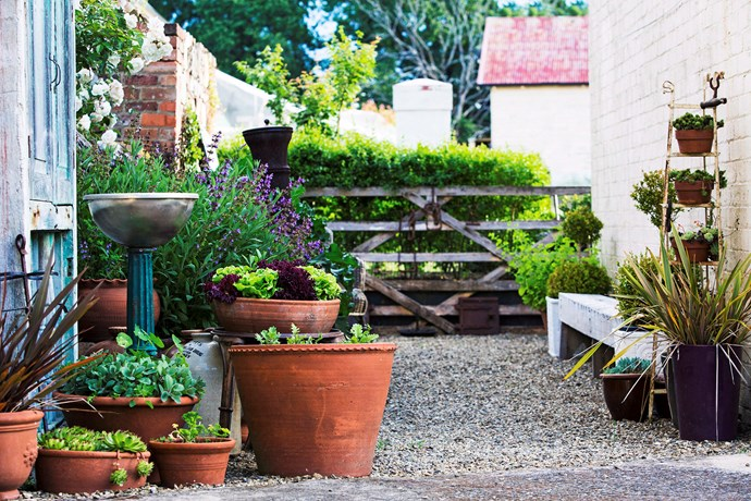"Fancy being your own greengrocer? Herbs and salad greens are easy to [grow at home](http://www.homestolove.com.au/how-to-make-a-herb-garden-3201|target=""_blank""), even in an apartment, so long as you have a balcony."
