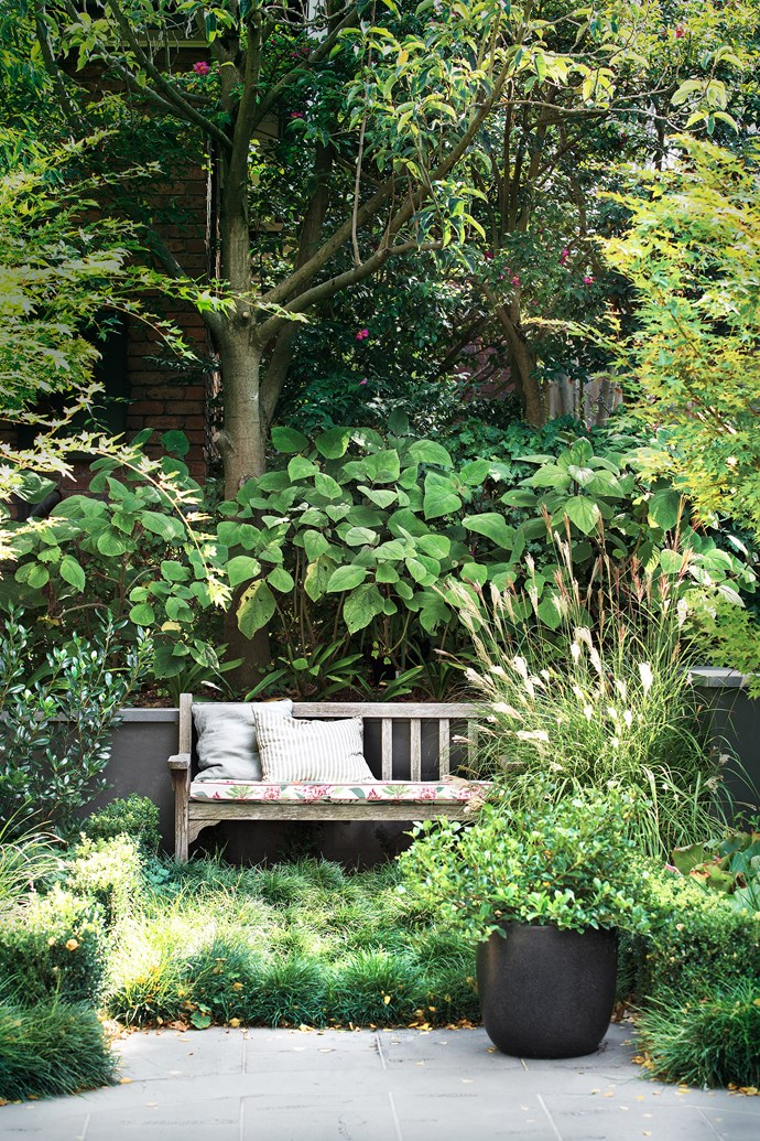 Areas of groundcover have been added to the layout in place of a high-maintenance lawn. Sally Richardson softened the weathered bench with pretty custom cushioning. Landscaping by Lachie Anderson Landscapes.
