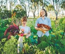Grown & Gathered: How to start a backyard farm