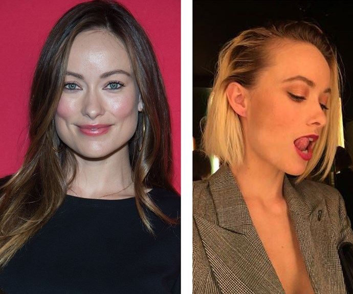 """Olivia Wilde turned to hairstylist Harry Josh for this fresh, blonde cut. """"#NoMoreMelania,"""" she captioned her hair reveal pic on Insta. Burn."""