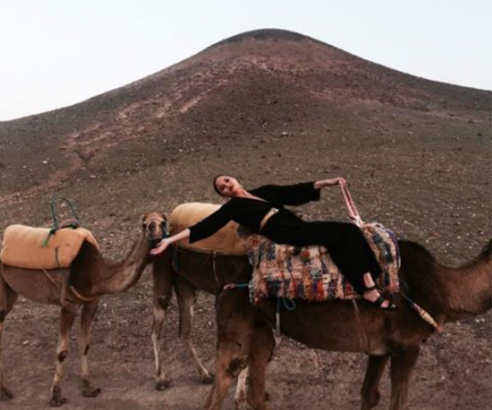 ...And camels...