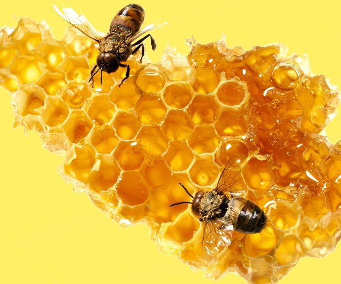 Why you should be eating more honey