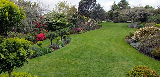 Taranaki Garden Spectacular