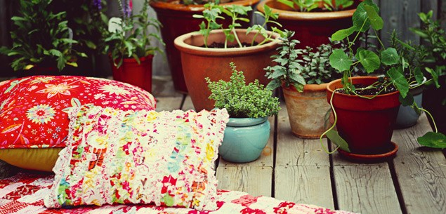 Tips for potting plants