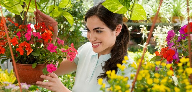 Tips for buying healthy plants