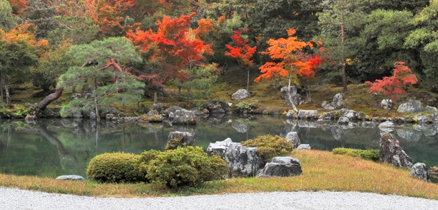 How to: Japanese gardens