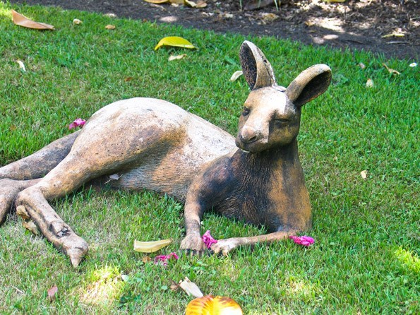 This kangaroo has charm and character and  provides a focal point in an open space