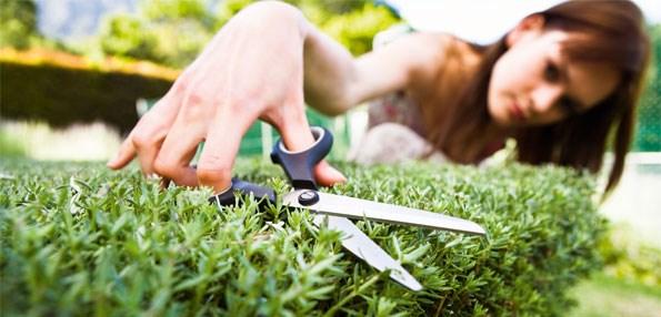 Gardening short cuts