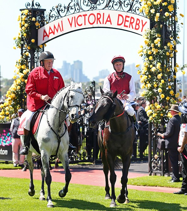 The main event of Melbourne Cup Carnival is Emirates Melbourne Cup Day.