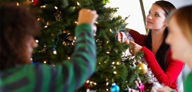 Christmas trees - fake or fir?