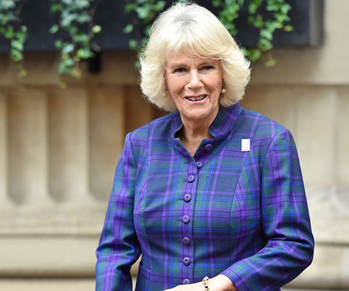 Camilla's on the hunt for a bride for Prince Harry