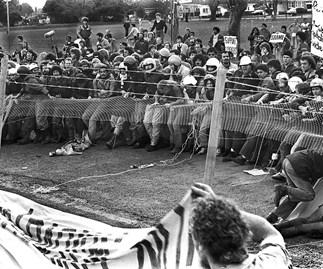 1981: The year New Zealand roared