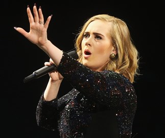 Adele plans to quit touring to raise her son