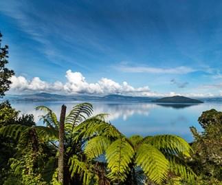 Exploring Rotorua's breath-taking beauty