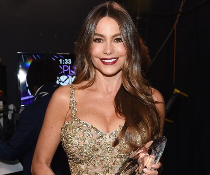 Bombshell Sofia Vergara basks in her Favourite Comedic TV Actress win.