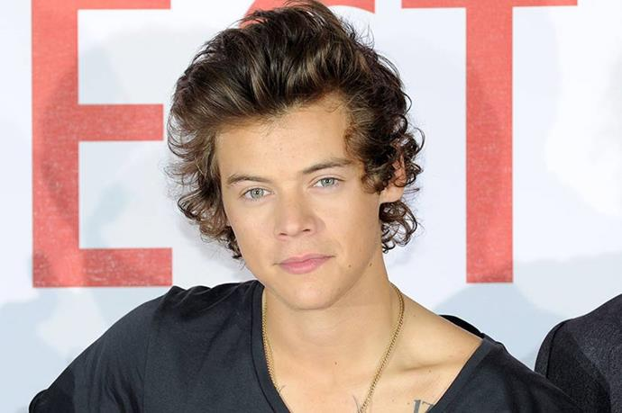 Most <em>One Directioners</em> want to marry Harry Styles, but we just want in on his hair styling secrets.
