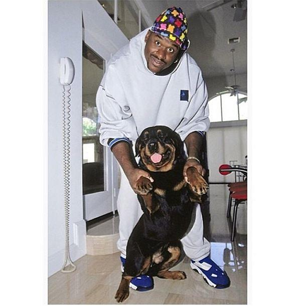 """""""I dribble rhymes like Basketball-ems"""",  Shaquille O'Neal: a rapper with a pup and a kids' beanie. The more you know..."""