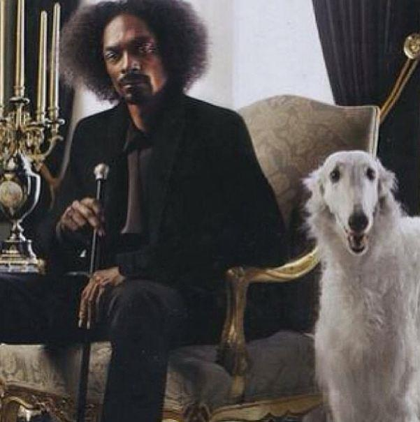 "Snoop Dogg. AKA ""The Doggfather""."