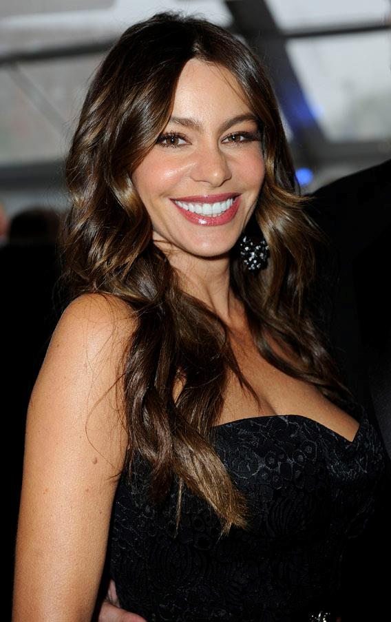 As the highest earning actress on television, Sofia Vergara always looks flawless. As a brunette...