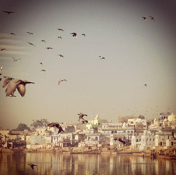 """Holy Lake in Pushkar""  <br><br> Instagram: @dotwillow </strong>"