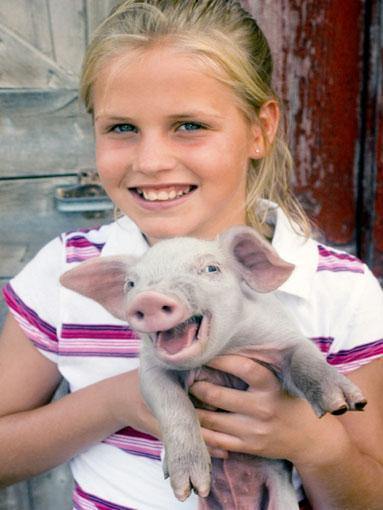 Primary School: Pig  Pigs are intelligent, inquisitive, social animals and can make great pets. The Vietnamese potbelly pig was quite popular in the '90s as they are more domesticated, and act like the family dog.   However, many local councils in Australia will not grant permits for a pig to be kept in a backyard so check before purchasing.
