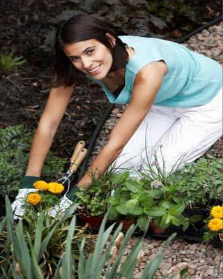 A hobby will get your mind off the things that normally stress you out. You may just need a project to concentrate on every now and then. It could be gardening, sewing, painting or a sport you love to take part in.