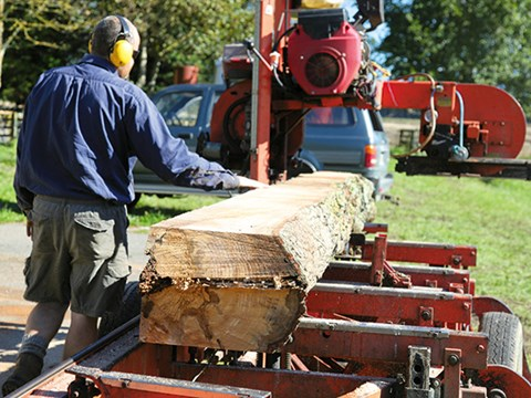 Farm forestry: Wood-Mizer sawmill