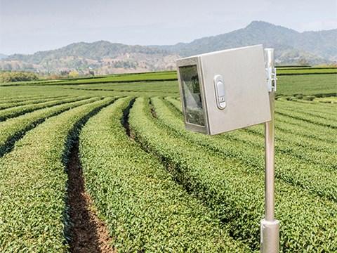 راهکار های افزایش ایمنی مزارع کشاورزی