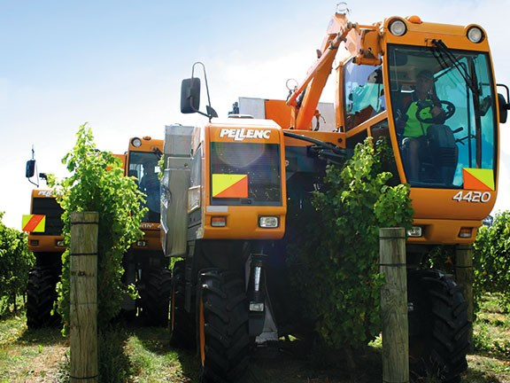 Brookfield Vine Services