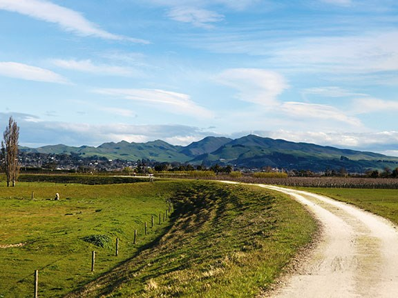 Cycle trails in Hawkes Bay