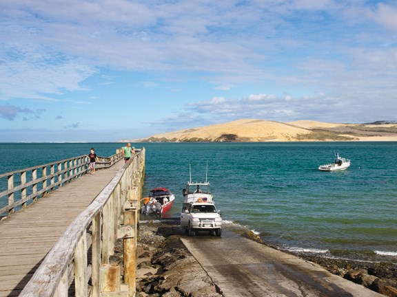 fishing the hokianga