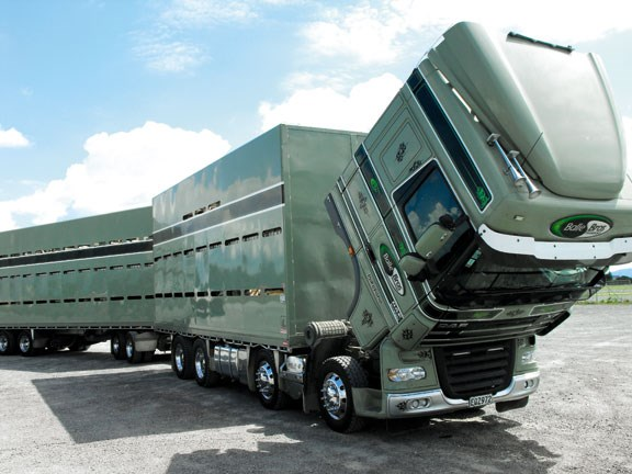 DAF XF 105 truck from Europe