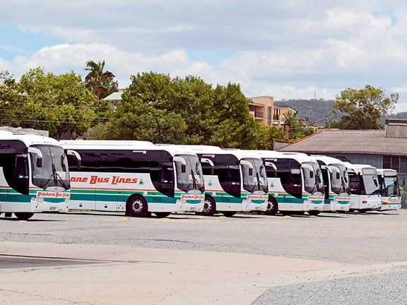 The Brisbane Bus Lines fleet