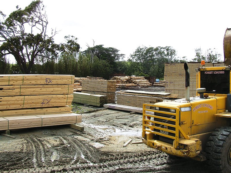 Forestry: Northpine Timber Mill in Waipu