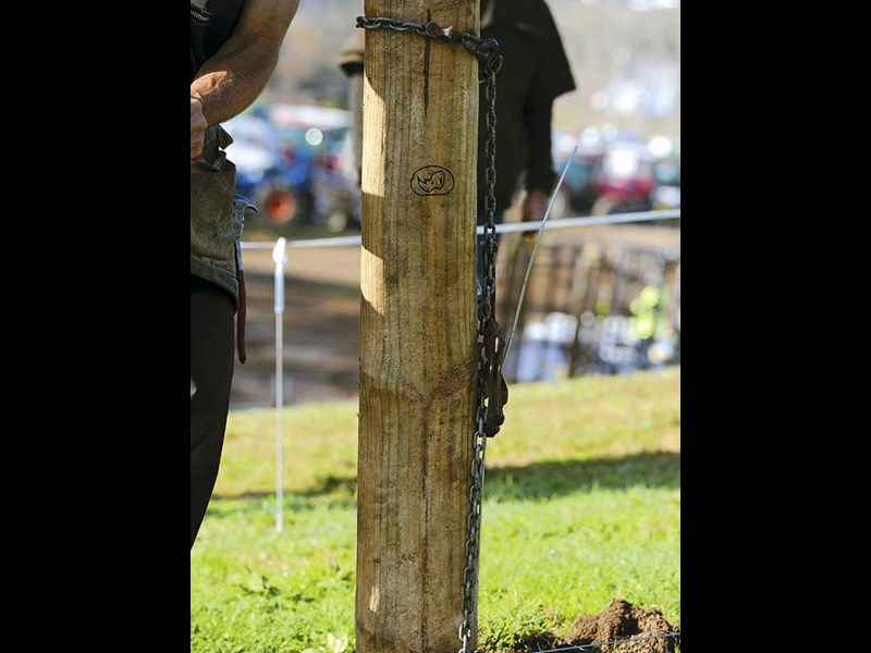 Fieldays fencing competition