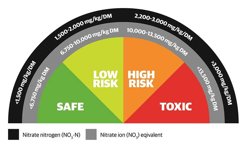 Risk Dial diagram