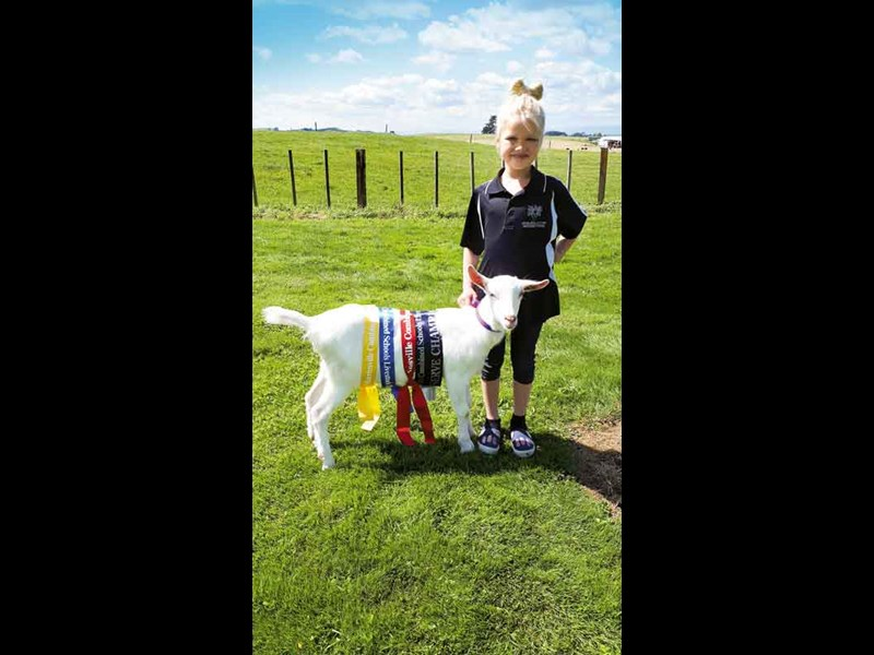 Ayla Byers 7 from David street School with a scout the goat