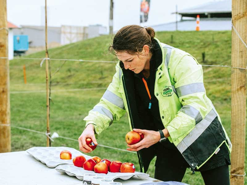 Emma Dangen sorts apples FMG Young Farmer of the Year