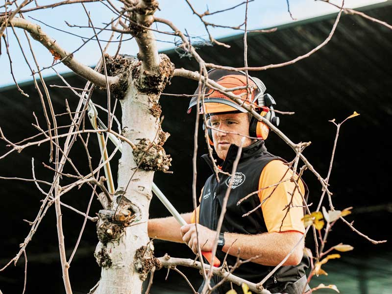 Matt McRae prunes a tree while standing on a hydralada FMG Young Farmer of the Year