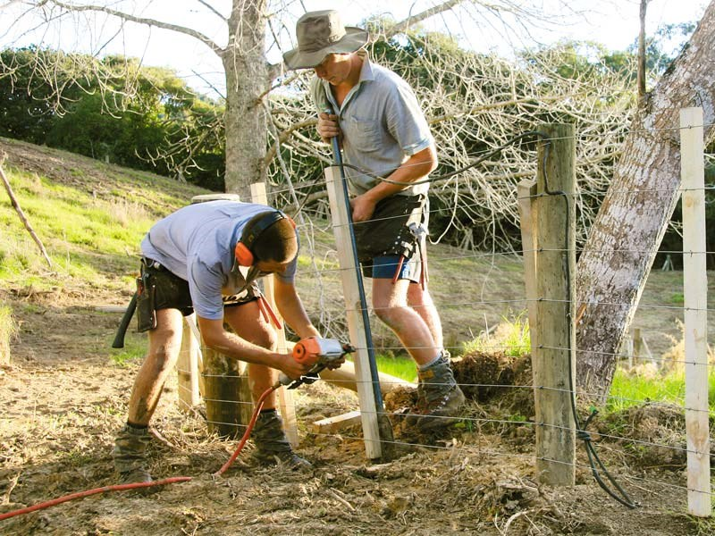 New Zealand fencing contracting trends